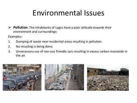 Essay about environmental pollution in egypt | detractors-agreeable cf
